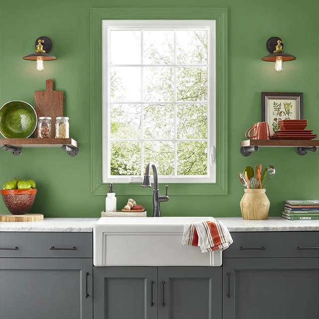 Kitchen painted in DEEP MOSS