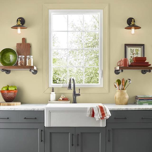 Kitchen painted in SEASON'S CHANGE