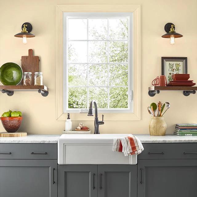 Kitchen painted in LION'S ROAR